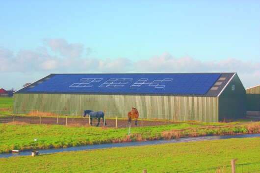 Foto Zonneveldt dak Engewormer